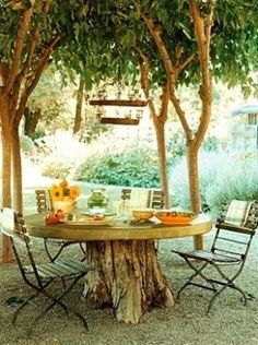 Tree stump serves as base for a rustic garden table