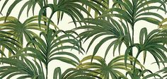 Palmeral Off White/Green wallpaper by House Of Hackney