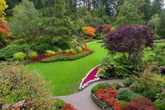 The Sunken Gardens in Autumn. Sunken Garden, Seeds Online, Salvia, Hydrangea, Fountain, Golf Courses, Bloom, Gardens, Victoria