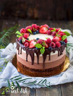 birthday cake decorating tips easy cakes to make and decorate Cake Decorating Techniques, Cake Decorating Tips, Mini Cakes, Cupcake Cakes, Cupcakes, Cupcake Ideas, Cake Cookies, Triple Chocolate Mousse Cake, Cake Recipes