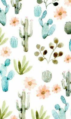 Cactus flowers wallpaper