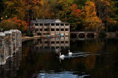 Lake Susan on the Montreat College campus.