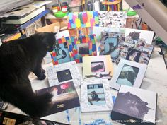Smokie inspects all the new goods.