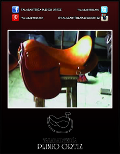 En la #TalabarteríaPlinioOrtiz encuentras los mejores productos. Uno de ellos es este Galapago. #Talabartería #Cuero #Galapago #Caballo #Cabalgata #Leather #Saddle #Horse