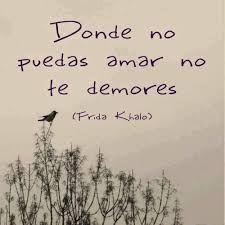 Resultado de imagen para frida kahlo frases de amor