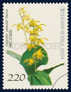 Korean Orchid Series (4th), Calanthe discolor Lindley for. sieboldii (Decne.) Ohwi, Plants, Yellow, Green, 2004 11 12, 한국의 난초 시리즈(네 번째 묶음), 2004년 11월 12일, 2419, 금새우난초, postage 우표