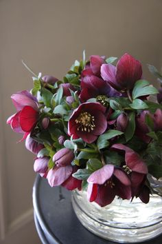 Helleborus, a tough plant and pretty cut flower, often cut to float in water bowls for special events.  CT
