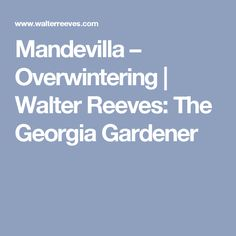 I believe my third grade friend Thomas Robinson told me my first urban legend. With all the solemn believability a nine-year old could muster, he recounted the Garden Shrubs, Rose Of Sharon, Overwintering, Growing Vegetables, Lawn And Garden, Snowball, Mandevilla Vine, Viburnum
