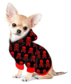 Chihuahua/Yorkie Hoodie Sweatshirt - Fits 5 to 9 LB Dog - Over 20 Patterns to Choose From!