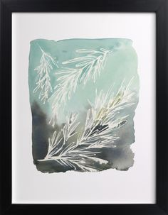 Click to see 'Sprig' on Minted.com