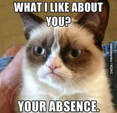 What I like about you? Your absence