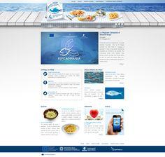 FEP Campania 2007/2013: Web Designer