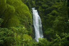 amazon rainforest waterfall