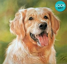 Golden Retriever pastel pencils portrait (drawing process video in the comments) (i.redd.it) submitted by Bongographic to /r/drawing 1 comments original   - #Art - Abstract Surreal and Fantasy Artists - #Drawings Doodles and Sketches - Oil and Watercolor #Paintings - Digital Arts - Psychedelic Illustrations - Imaginary Worlds Architecture Monsters Animals Technology Characters and Landscapes - HD #Wallpapers by Visualinspo