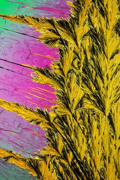 Macrophotography of 2,6-diphenylpyridine by R. Tanaka. It has punk poster influences in its colouring and image quality, and echoes some of the best work by the masters of abstract painting of the last Century, and yet it is totally it's own thing.