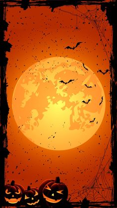 Halloween Wallpaper Horizontal Pumpkin for Hallowe Halloween Wallpaper Iphone, Holiday Wallpaper, Fall Wallpaper, Halloween Backgrounds, Animal Wallpaper, Wallpaper Backgrounds, Witch Wallpaper, Retro Halloween, Halloween Pictures