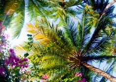 Holidays To Maldives Provides Relaxation Every Day - http://travelglory.com/holidays-to-maldives-provides-relaxation-every-day/ #travel