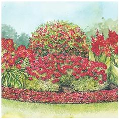 Perennial Sun Collection in Red Garden Design