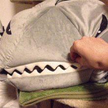 Abren a un tiburón y encuentran un gato adentro ! - Malainfluencia