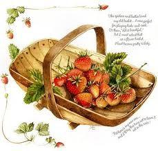 Marjolein Bastin- strawberries