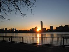 Summer runs on the Charles River