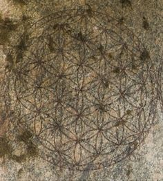 Flower of Life on the Osirion