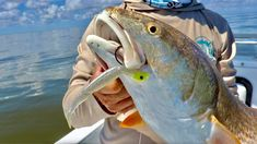 How To Catch Big Redfish With A Lure Under A Popping Cork Best Fishing, Kayak Fishing, Fishing Tips, Red Fish, Saltwater Fishing, Cork, Fishing Videos, Good Presentation, Bays