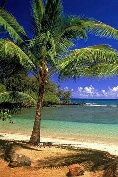 Palm tree & beach idea for Mommas tattoo