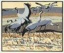 Cranes, woodcut by Robert Greenhalf