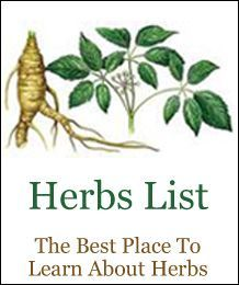 Healing Herbs and Medicinal Plants List