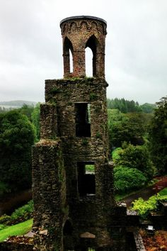 Blarney Castle // Cork, Ireland proud to say I've been here & taken a nearly identical snapshot :)