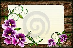 Pansies Stock Photos – 1,899 Pansies Stock Images, Stock Photography & Pictures - Dreamstime - Page 10