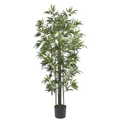 Nearly Natural 5187 Curved Bamboo Silk Tree Green 5-Feet