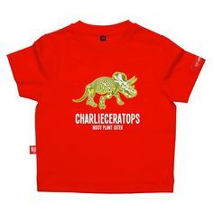 Personalised Triceratops Dinosaur Child's Tshirt #dinosaurgiftideas #dinosaurgiftideasfortoddlers #dinosaurgiftideasfor5yearolds #personaliseddinosaurgiftideas
