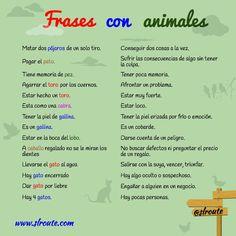 Learn Spanish For Adults Classroom Spanish Learning Videos Phrases Referral: 6723083878 Spanish Idioms, Spanish Notes, Spanish Phrases, Ap Spanish, Spanish Grammar, Spanish Culture, Spanish Vocabulary, Spanish Teacher, Spanish Classroom