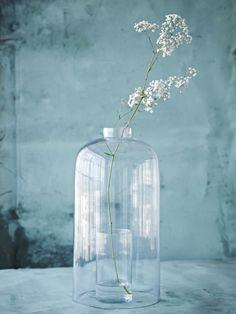 Simple white floral stem in a clear vintage bottle vase Deco Floral, Arte Floral, Ikebana, Bottles And Jars, Bottle Vase, Home And Deco, Wabi Sabi, Shades Of Blue, Interior Inspiration