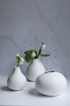 Crisp white ceramics in contemporary shapes. Style a few together with some single buds for an elegant contemporary look.