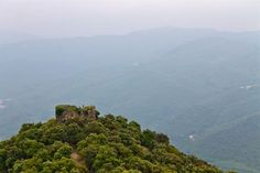Montseny: A nature escape near Barcelona | Wild JunketWild Junket