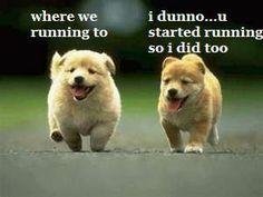 Grab a friend and go for a run! :)