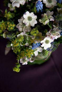 Dogwood blossom, bupleurem, grape hyacinth muscari, and thistle. Photo: Shira Weinberger.
