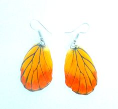 Real Butterfly Wings Earrings Handmade Unsual Color Jewelry Gift  / Natural Jewelry Earring by Avivahandmade on Etsy