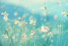 http://s2.favim.com/orig/29/dream-dreaming-fairy-tale-flowers-photography-Favim.com-244010.jpg