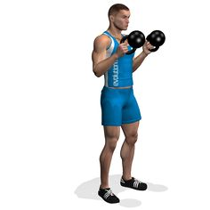 CURL HAMMER KETTLEBELL INVOLVED MUSCLES DURING THE TRAINING BICEPS