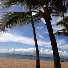 Maui #paradise from @Roianne Massa Alii Resort via @Kyra Costantino