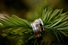 Shelley & Ian {Wahclella Falls Elopement Wedding Photographer} » Velvet Owl Photography Blog