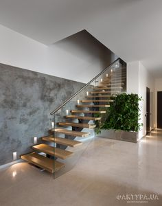 Wintergarden at the Northern Club / Fearon Hay Architects - Cool staircase idea. - Wintergarden at the Northern Club / Fearon Hay Architects – Cool staircase ideas. … stairs with beadboard risers…like this idea for my basement stairs! Home Stairs Design, Interior Stairs, Modern House Design, Stair Design, Modern Stairs Design, Steel Stairs Design, House Staircase, Staircase Ideas, Stair Idea