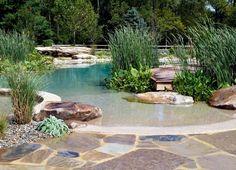bassin de jardin de forme asymétrique, graminées d'ornement, plantes vertes et déco nature