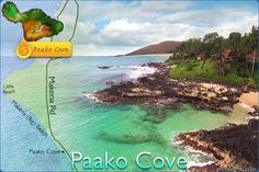 Paako Cove aka Secret Cove (Maui, Makena) offers the most fabulous snorkeling experience in Maui during the early morning & mid-day. It offers beautiful reef formations, colorful tropical fish, & vibrant sea beds.