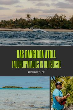 Urlaub auf Rangiroa – zu Gast auf dem zweitgrößten Atoll der Welt    #Rangiroa #FranzösischPolynesien #Polynesienurlaub #Polynesien #Tauchurlaub #Tuamotus #TuamotuInseln What Inspires You, Travel Agency, Mauritius, Beautiful Islands, Outdoor Travel, Jamaica, Beaches, Have Fun, Wanderlust