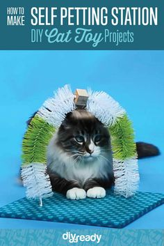 DIY Cat Toy Self Petting Station | 25 Adorable DIY Projects You and Your Pet Will Be Fascinated About